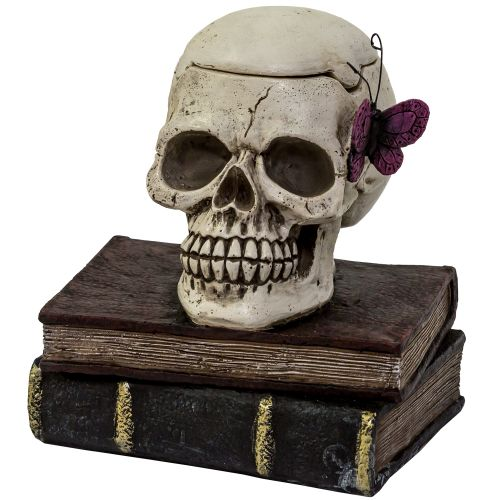Ashtray Skull On Books Butterfly